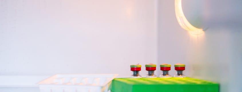 organização da geladeira de vacinas